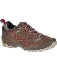 Merrell S/ladies Chameleon 7 Gtx Waterproof Walking Hiking Shoes - Brown