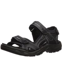 Ecco Offroad Multisport Outdoor Shoes - Black