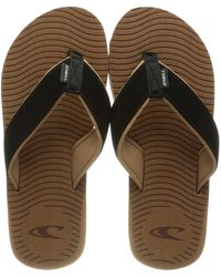 O'neill Sportswear Koosh Sandals - Marrone