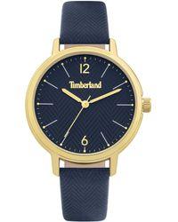 Timberland S Analogue Quartz Watch Tbl15960myg.03 - Metallic