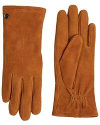 Esprit 119ea1r001 Gloves - Brown
