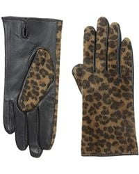 Adrienne Vittadini - Leopard Faux Calfskin And Leather Gloves - Lyst