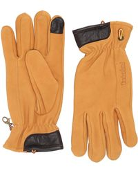 Timberland Nubuck Leather Glove with Touch Tips Handschuhe für kaltes Wetter - Orange