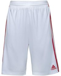 adidas - Essential 3.0 S Basketball Sports Training Shorts - Lyst