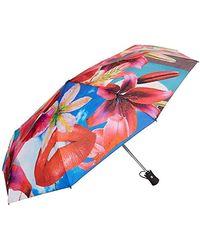 Desigual , Parapluie pliants femme Persian Red (Rot/Blau/Gelb) Taille unique - Rouge