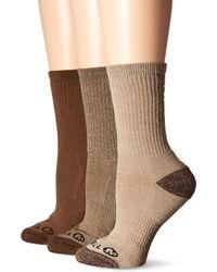 Merrell 3 Pack Cushioned Performance Hiker Socks - Brown