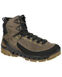 7298c4cdd Biom Venture Tr High Rise Hiking Shoes