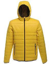 Regatta Acadia Warmloft Touch Jacket Jacke - Gelb