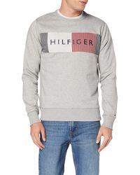 Calvin Klein Hilfiger Logo Sweatshirt Felpa - Grigio