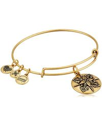 ALEX AND ANI - Healing Love Expandable Rafaelian Bangle Bracelet - Lyst