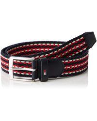 Tommy Hilfiger Adan Stripe Elastic Belt 3.5 Cinturón - Multicolor