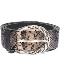 Replay Aw2507.001.a3109c Belt - Brown
