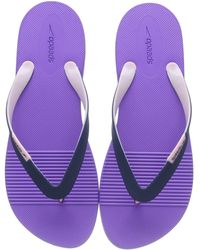 Speedo Saturate Ii Thong Flip-flop - Purple