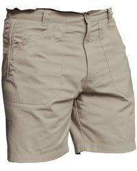 Regatta S New Action Shorts - Multicolour