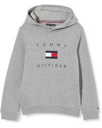 Tommy Hilfiger TH Logo Hoodie Suéter - Gris