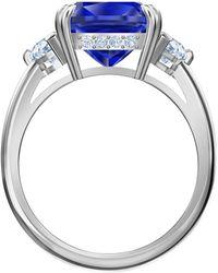 Swarovski Attract Cocktail s Rhodium Plated 52 Ring 5515714 - Blau
