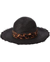 Dorothy Perkins Leopard Fedora Scarf - Black