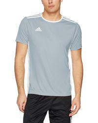 adidas Soccer Entrada 18 Jersey - Grigio