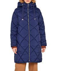 Esprit 099ee1g040 Abrigo - Azul