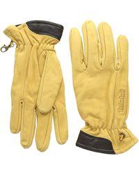 Timberland Gl360088 Handschuhe - Gelb