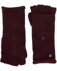 Esprit 100ca1r303 Cold Weather Gloves - Purple