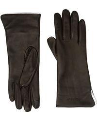 Calvin Klein Clr Contrast Gloves - Black