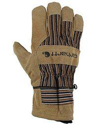 Carhartt - Dozer Glove - Lyst