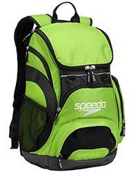 Speedo - Teamster Rucksack, Erwachsene - Lyst