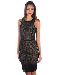 Line | Foster Mesh Dress | Lyst
