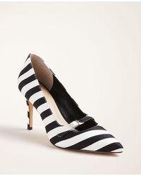Ann Taylor Mila Striped Mini Buckle Pumps - Black