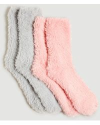 Ann Taylor Cosy Gifting Sock Set - Pink