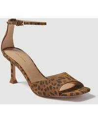 Ann Taylor Imogen Leopard Print Suede Square Toe Sandals - Brown