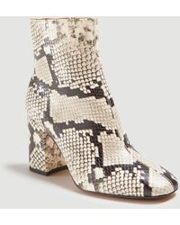 Ann Taylor North Snake Print Leather Block Heel Booties - Multicolour