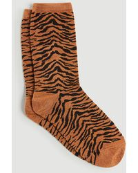 Ann Taylor Tiger Print Trouser Socks - Brown