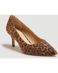 Ann Taylor Louann Leopard Print Court Shoes - Brown