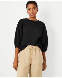 Ann Taylor - 3/4 Sleeve Sweatshirt - Lyst