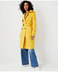 Ann Taylor Twill Trench Coat - Yellow