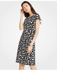 Ann Taylor - Petite Floral Boatneck Sheath Dress - Lyst