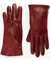 Ann Taylor Leather Gloves - Red