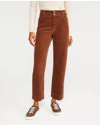 Ann Taylor Sculpting Pocket Corset High Waist Straight Jeans - Brown