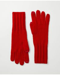Ann Taylor Ribbed Cashmere Gloves - Red