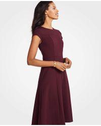 Ann Taylor Petite Seamed Ponte Flare Dress - Purple