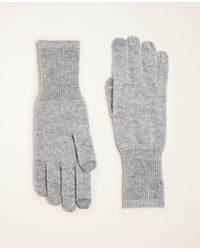 Ann Taylor Ribbed Cashmere Gloves - Gray