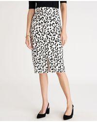Ann Taylor Petite Animal Print High Waist Pencil Skirt - Black