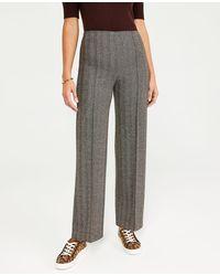 Ann Taylor The Side Zip Full Length Knit Pant - Black