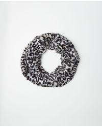 Ann Taylor Snow Leopard Print Faux Fur Snood - Multicolour