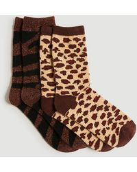 Ann Taylor Animal Print Cosy Gifting Sock Set - Brown