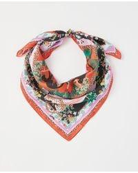 Ann Taylor - Jungle Print Silk Little Scarf - Lyst