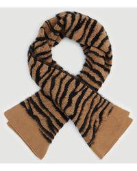 Ann Taylor Zebra Print Blanket Scarf - Brown