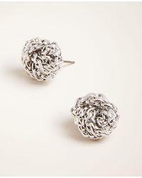 Ann Taylor - Knot Stud Earrings - Lyst